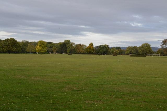 Racecourse grounds