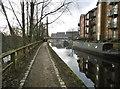 SJ9398 : Ashton-under-Lyne, canal by Mike Faherty