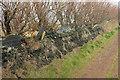 SW8576 : Wall by the coast path, east of Trevose Head by Derek Harper