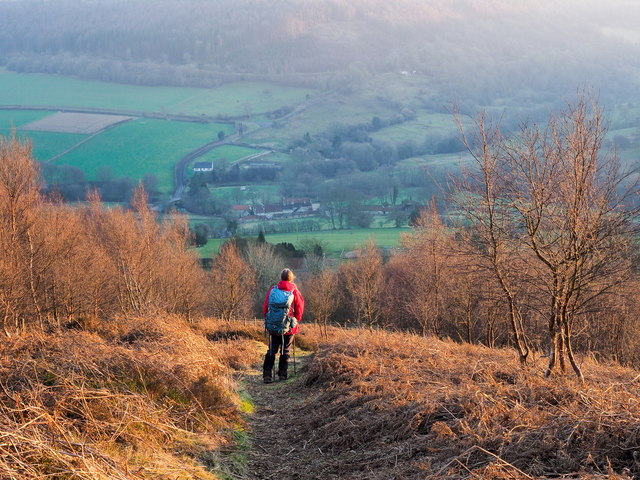 Descending from Hawnby Hill