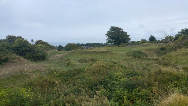 Townsend Nature Reserve, Swanage