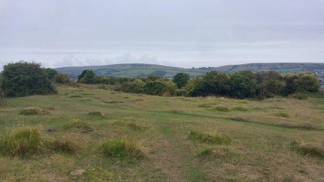 Calcareous grassland at Townsend Nature Reserve, Sawanage