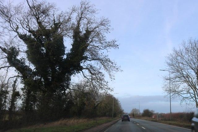 Banbury Road, Twyford