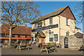 TQ6404 : The Royal Oak and Castle Inn by Ian Capper