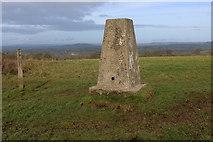 ST8412 : Trig Point on Hambledon Hill by Chris Heaton