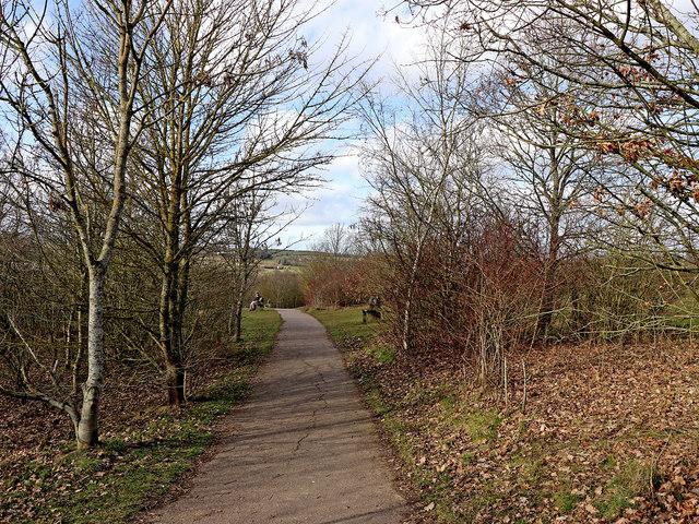 Country Park south-west of Alveley, Shropshire