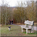 SO7584 : Country Park south-west of Alveley, Shropshire by Roger  Kidd