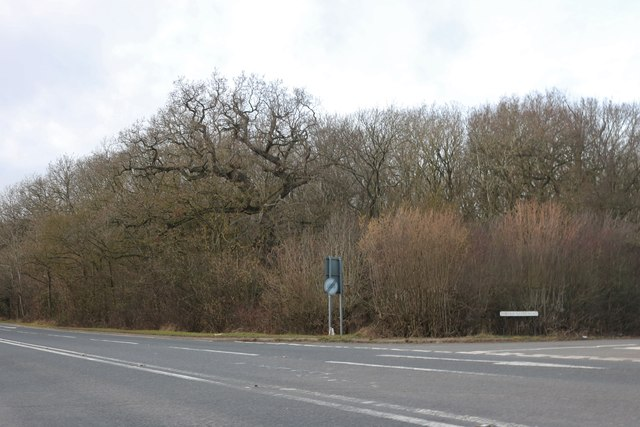 Chesterton Hill by The Old Gated Road