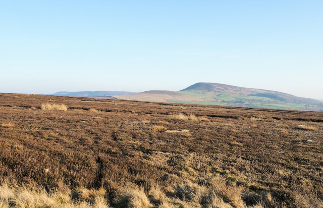 Heather moorland west of Sportsman's Hall