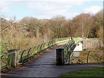 SO7483 : The Highley-Alveley Severn footbridge in Shropshire by Roger  Kidd