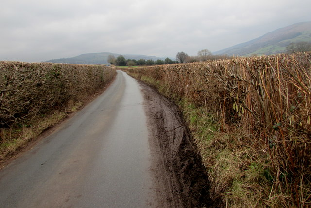 Muddy passing place on the road to Llanbedr, Powys