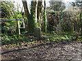 ST7396 : Milestone Snitend Lane, North Nibley by Mr Red