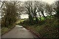 SW9770 : Lane along Polmorla valley by Derek Harper