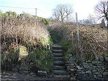SE0424 : Footpath off John Naylor Lane by Stephen Craven