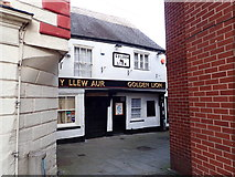 SJ0566 : Y Llew Aur - Golden Lion, Denbigh by Eirian Evans