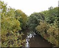 SJ8990 : River Goyt by Gerald England