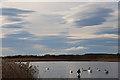 NJ2366 : Föhn Sky over the Loch of Spynie by Anne Burgess