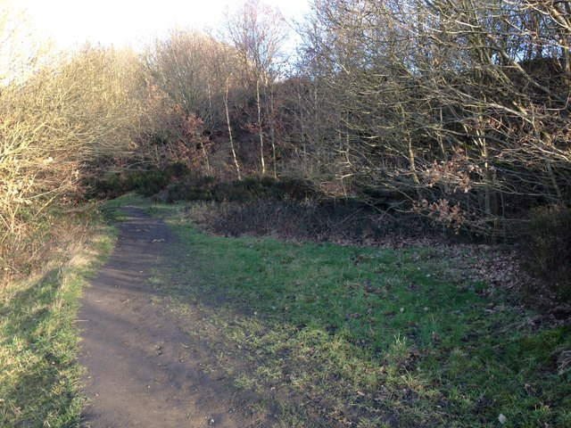 Footpath through Reins Wood next to the quarry