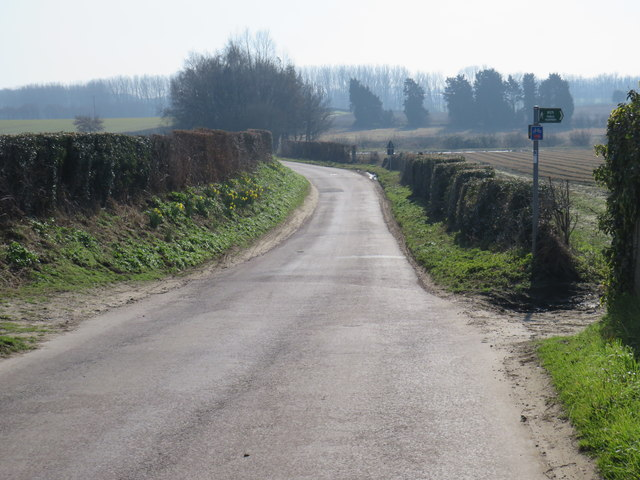Buckland Road, near Cliffe