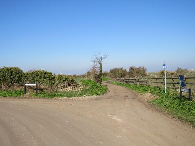 Track near Cliffe