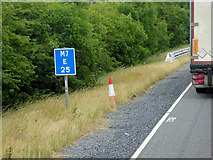 N8720 : Location Reference Indicator (LRI) on the M7 by David Dixon