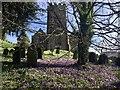 SS9128 : Church of All Saints, Dulverton by Marika Reinholds