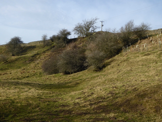 Hillside in the Rookhope valley