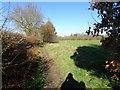 SO8499 : Nurton Path by Gordon Griffiths