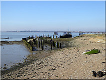 TQ7076 : Foreshore south of Cliffe Fort by Robin Webster