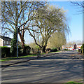 TL4856 : Cherry Hinton: Sidney Farm Road by John Sutton