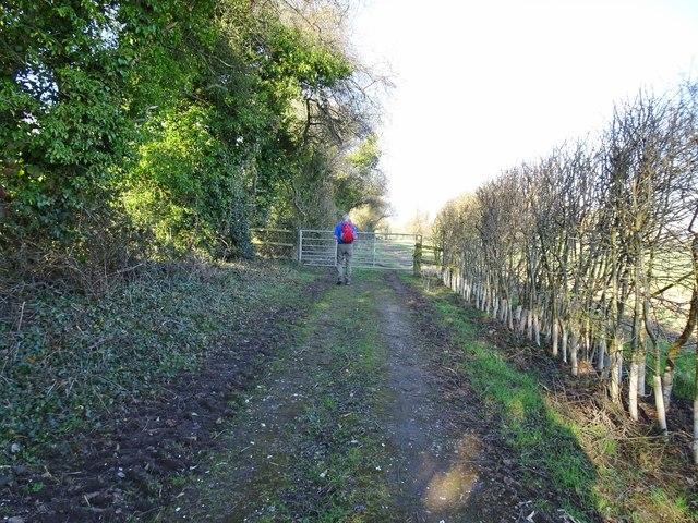 Wrottesley Path