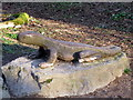SJ1962 : Lizard carving at Loggerheads Country Park by John S Turner
