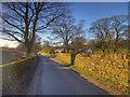 SD6119 : Coppice Lane by David Dixon