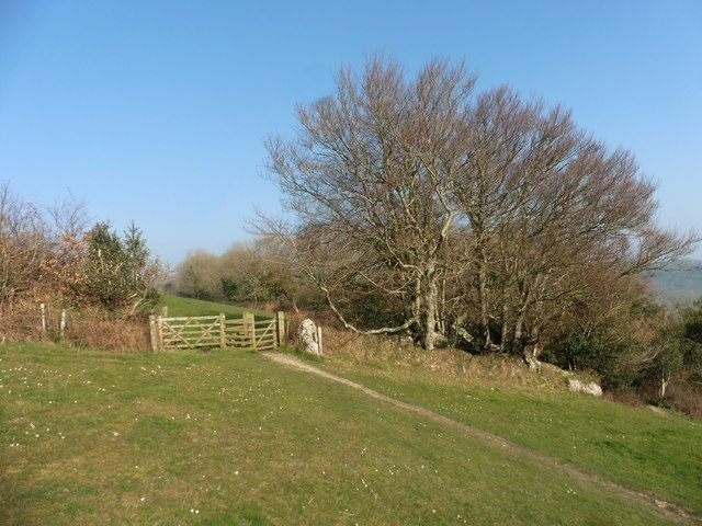 Path on Salcombe Hill
