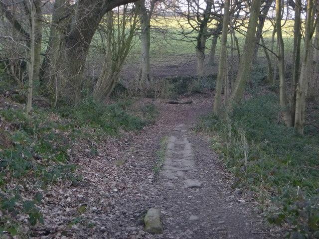 Cart Track on Binns Lane, Southowram