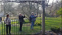 TQ2879 : Hyde Park, London by Christine Matthews