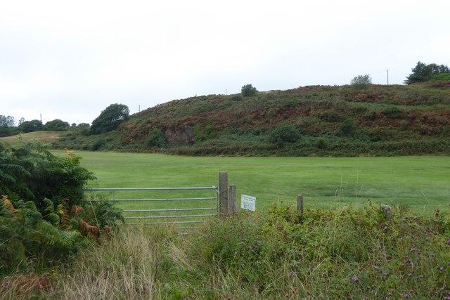 Field beside the road