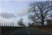 SP3950 : Banbury Road, Burton Dassett by David Howard