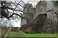 SO4108 : North east wall of Raglan Castle by M J Roscoe