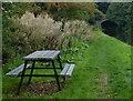 SD4854 : Picnic bench near Double Bridge No 85 by Mat Fascione