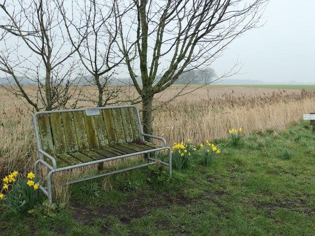 Jimmy's bench, Mawdesley Moss