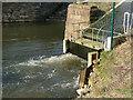 SJ7567 : Cranage hydro power plant - detail by Stephen Craven
