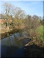 SJ7567 : River Dane upstream of Cranage Bridge by Stephen Craven