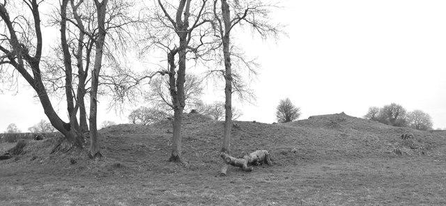 Giant's Grave, near Luckington, Wiltshire 2019
