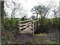 SO9562 : New footbridge on an old route by Jeff Gogarty