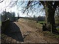 SJ7667 : Hermitage Bridge - top by Stephen Craven
