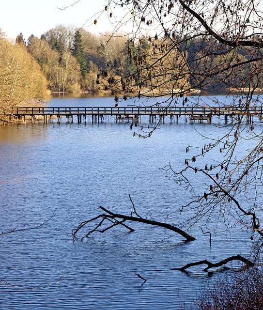The Great Pool in Patshull Park, Staffordshire