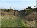 SJ8657 : Former quarry access behind Daisy Bank Farm by Stephen Craven