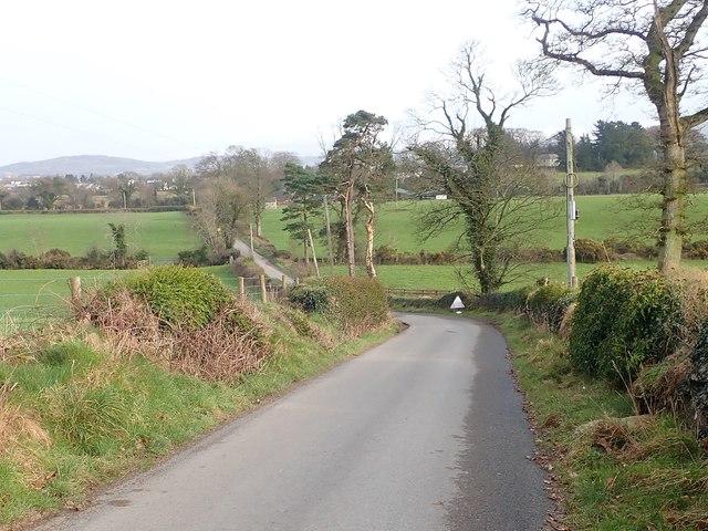Wood Lane descending from the Slieve Gullion Park lodge