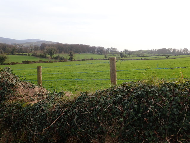 Pasture land on the North side of Wood Road